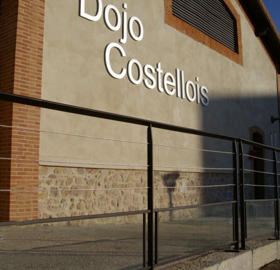 REALISATION DU DOJO COSTELLOISLE COTEAU (42)